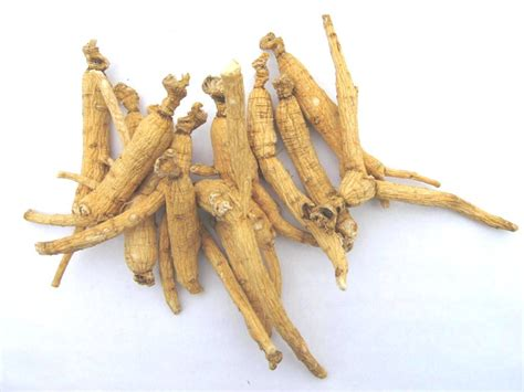 Ginseng Tea buy ginseng root tea benefits how to make side effects