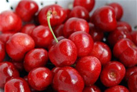 cereza guinda cherry gastronom 237 a a libreta abierta i tipos de cerezas