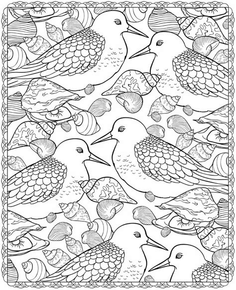 sea birds coloring pages welcome to dover publications