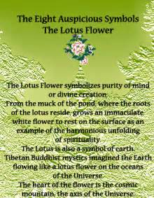 Significance Of The Lotus Flower The Eight Auspicious Symbols Of Buddhism Lotus Flower