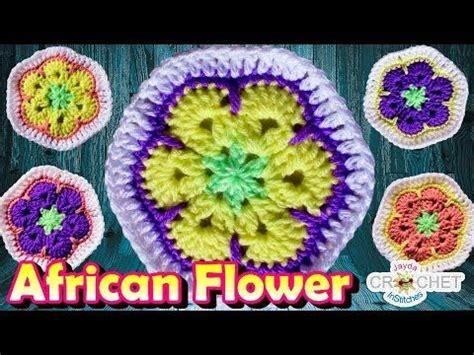 fiori africani oltre 25 idee originali per fiori africani su