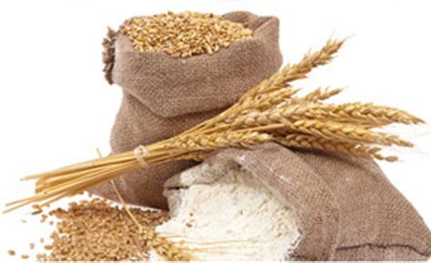 3 food sources of whole grains whole grains and their benefits nestl 233 india