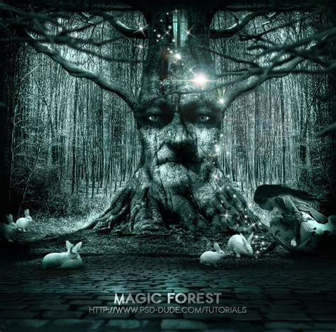 the lost rainforest mez s magic books tale photoshop manipulation tutorials psddude