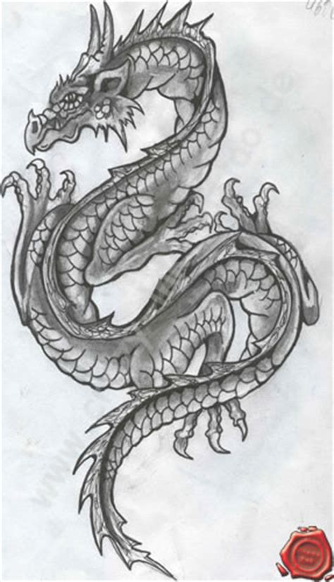 drachen tattoos tattoostudio da vinci ink in weilheim