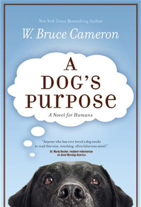 a s purpose book book review a s purpose a s journey vet changes world