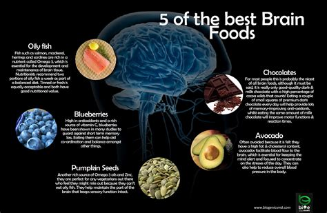 diet for the mind the science on what to eat to prevent alzheimer s and cognitive decline books 5 o the best brain food