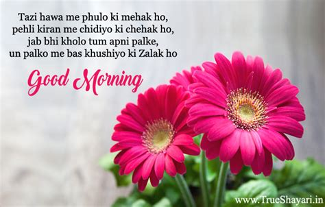 Flowery Syari morning images in shayari status