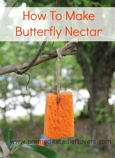 how to make butterfly nectar make a quick and simple