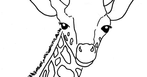Giraffe Coloring Pictures by Baby Giraffe Coloring Pictures Www Imgkid The
