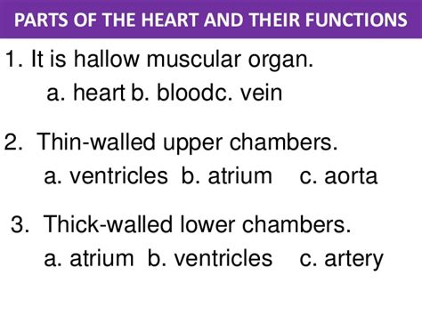 sections of library and their functions parts of the heart and their functions image collections