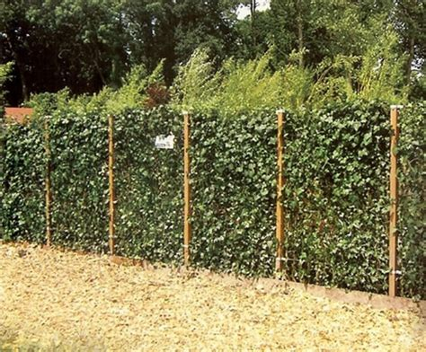 euro fencing systems ltd green screen instant security