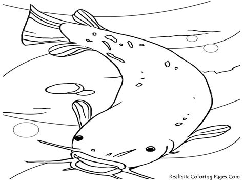 big coloring pages for kids kids dog drawings how to draw