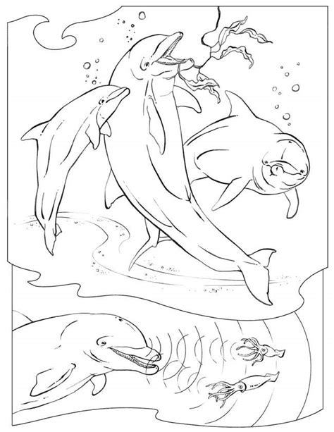 ocean background coloring page ocean animal color pages coloring home