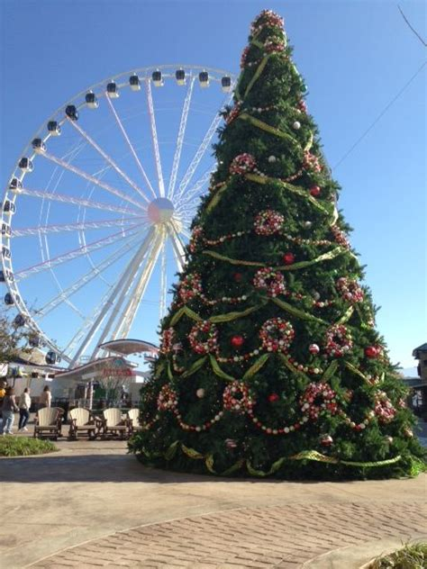 christmas tree at the island in pigeon forge special