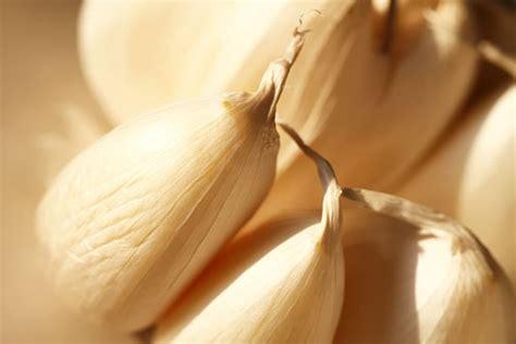 Lemari Kayu Bawang bawang putih