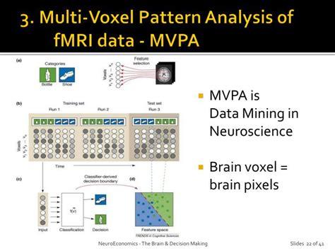 multi voxel pattern analysis neuroimaging ppt neuroeconomics powerpoint presentation id 2159267