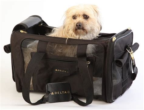 Pet Carriers Airline Approved In Cabin by 8 Best Airline Approved Pet Carriers For In Cabin Flights