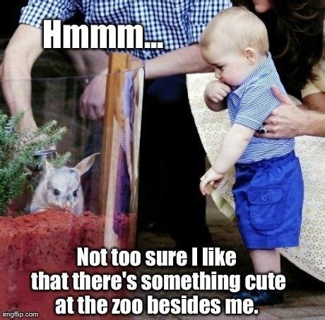 Prince George Meme - prince george meme prince and prince georges on pinterest