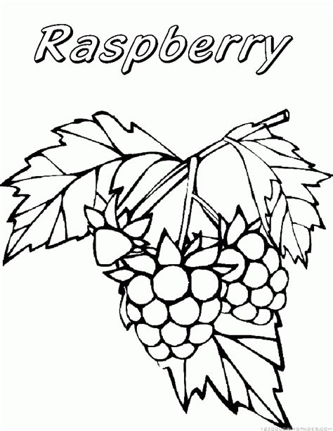 free raspberry coloring pages