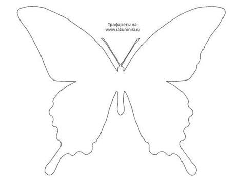 imagenes de mariposas moldes patrones de mariposa para decorar las paredes ideas para