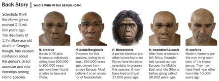 the last human a guide to twenty two species of extinct humans ebook can several species of human beings co exist quora