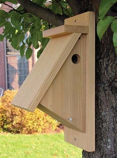 bird house feeder plans bird house feeder plans elegant 53 diy bird house plans that will attract them to your