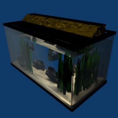 Aquarium Fish Model Cumi 13 Liter 3d aquarium fish aquatic model