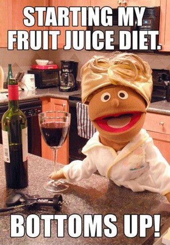 wine gifs memes   internet calais