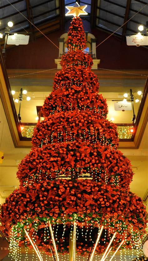 top ten beautiful christmas trees raffertys rules