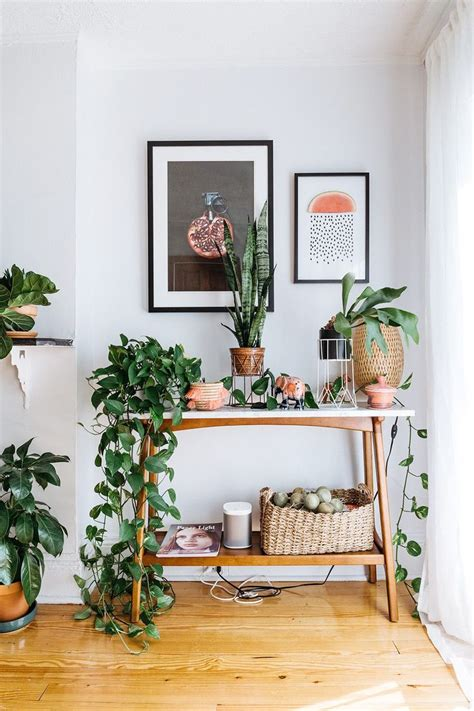 apartment plants ideas 25 best ideas about swedish interior design on