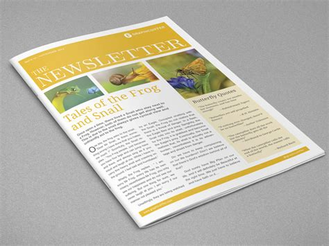 indesign newsletter templates graphicdiffer
