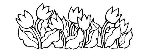 { Mormon Share } Tulips
