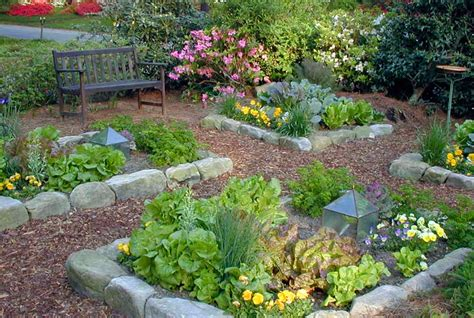 backyard vegetable garden architectural design