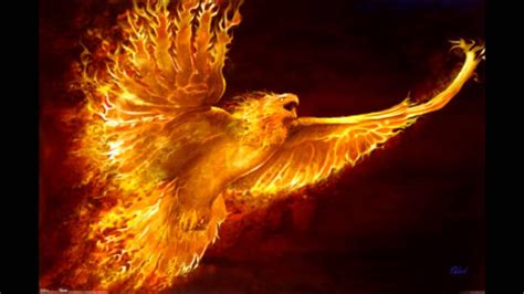 michael che phoenix phoenix rising paul dinletir youtube