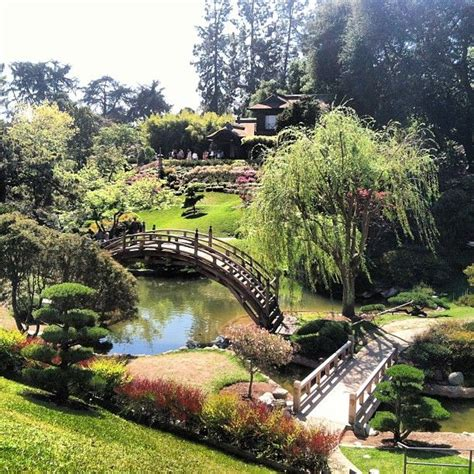 Botanical Gardens In Pasadena 17 Best Images About Huntington Gardens California On Pinterest Gardens Museums And Los Angeles