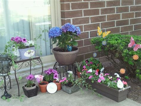 small garden flowers small apartment patio flower garden gardening