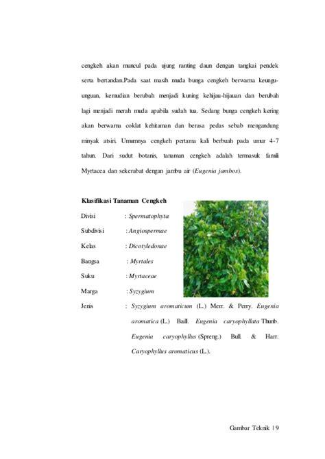 Minyak Cengkeh pembuatan vanillin sintetik dari daun cengkeh