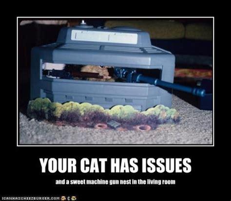 with pictures cat pictures with guns cat picture