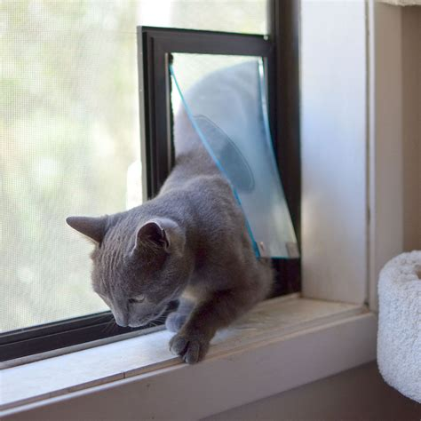Catflap In Glass Door Hale Cat Flap Pet Doors For Screens