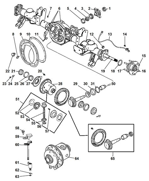 diagram of differential axle rear with differential housing and axle shafts for
