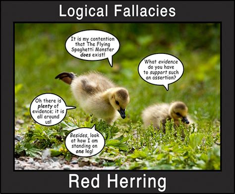 Logical Fallacy Exles Logical Fallacies 3 A Photo On Flickriver
