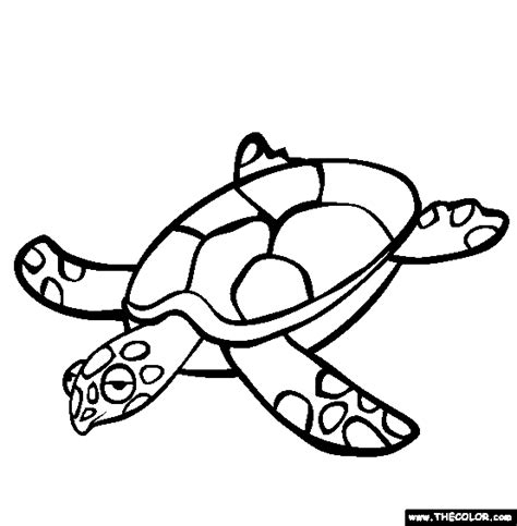 turtle coloring pages online hawaiian turtle outline clipart panda free clipart images