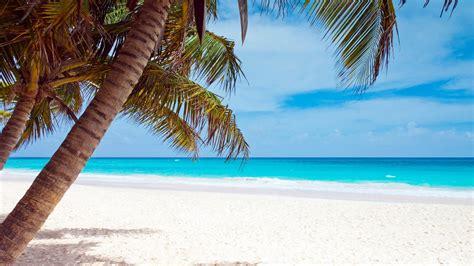 Strand Meer Bilder by Bilder Palmenstrand Karibik