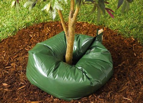 automatic tree 15 gallon tree automatic ooze watering system the