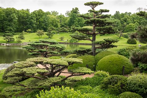 Botanical Gardens Chicago Il Works Of At The Chicago Botanic Garden Gotham Chronicles