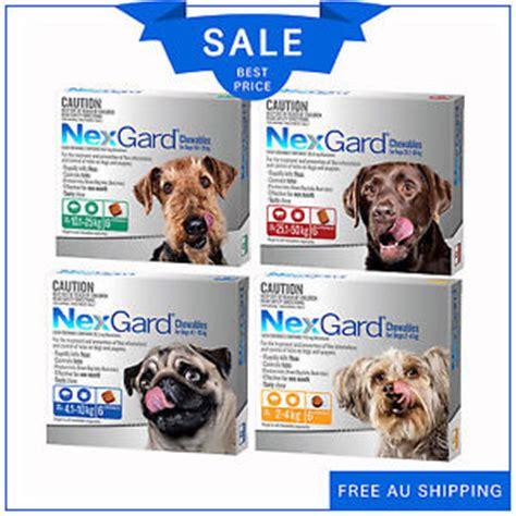 flea chews for dogs nexgard nexguard for dogs flea and tick treatment 6 chews all sizes by merial ebay