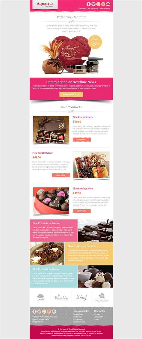 marketing newsletter templates email marketing newsletter template by