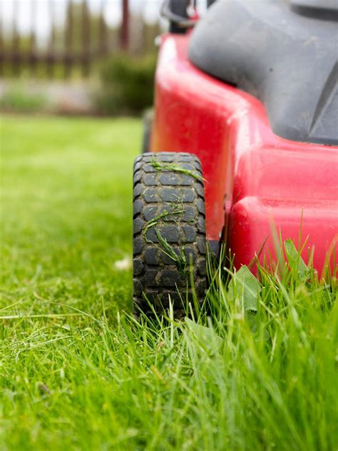common lawn mowing issues    deals