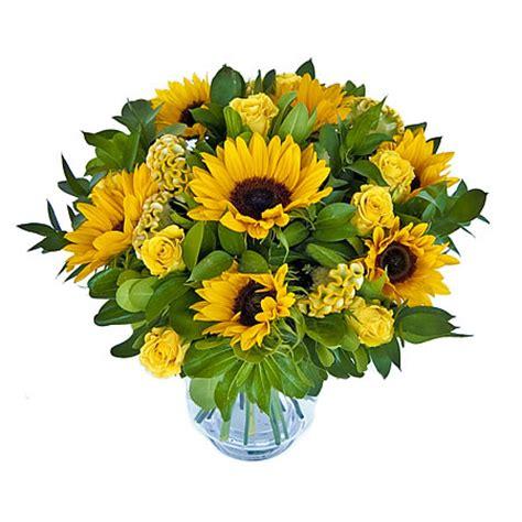 bosje bloemen plaatjes zonnebloem klassieker vanaf 17 95 123bloemenbestellen nl