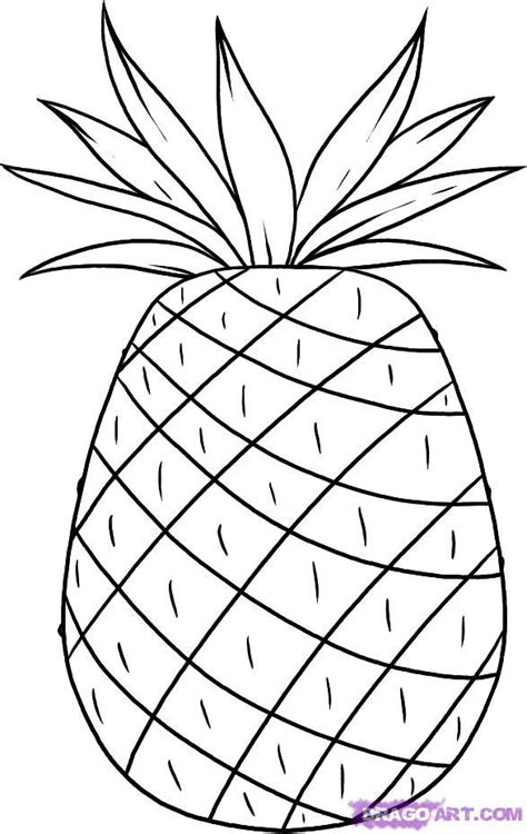 pineapple coloring pages coloring pineapple drawing sweatshirt pinterest